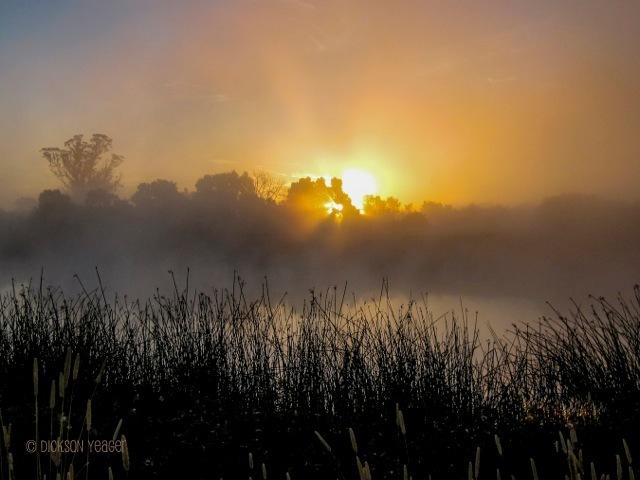summer solstice 2014 2