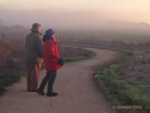 sunrise walkers