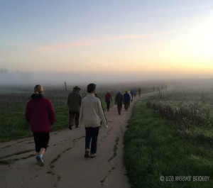 Summer Solstice Celebration Walk 2015